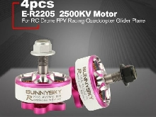 SUNNYSKY E-R2205 3-4S 2500KV Lightweight CCW/CW Brushless Motor for RC Drone R1