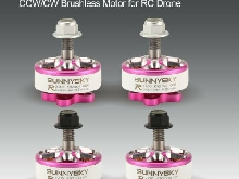 SUNNYSKY E-R2205 3-4S 2500KV Lightweight CCW/CW Brushless Motor for RC Drone GT